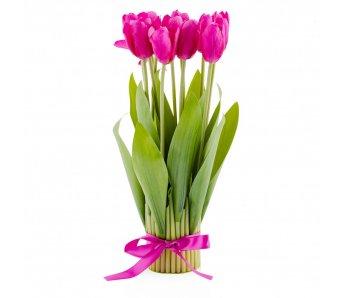 Kytica tulipánov TULIP ružová
